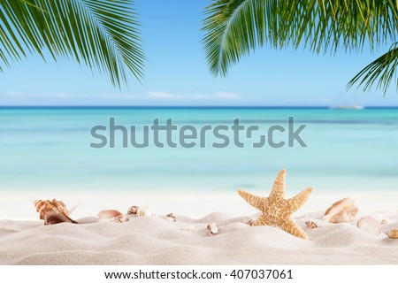 Summer sandy beach with blur ocean on background - stock photo