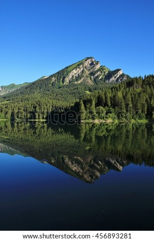Summer scene in the Swiss Alps. Mountain and fir forest reflecting in lake Obersee, Glarus Canton. - stock photo