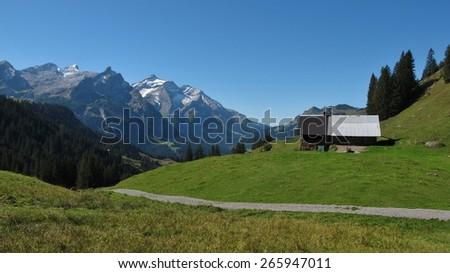 Summer scene on the trekking route from Lauenen to Gsteig bei Gstaad - stock photo