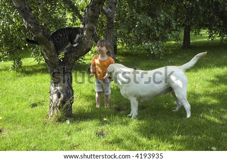 summer scenic. cat, dog, tree and sweet girl - stock photo