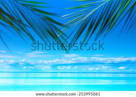 Summer Sea Beach  - stock photo