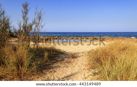 Summer seascape: Nature Reserve of Torre Guaceto.BRINDISI (Apulia)-ITALY-Mediterranean maquis: a nature sanctuary between the land and the sea. - stock photo