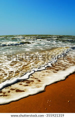 Summer seascape - wave run through the golden sand on the beach closeup on a warm sunny cloudless day   - stock photo