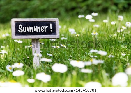 Summer signboard in the meadow and flowers - stock photo