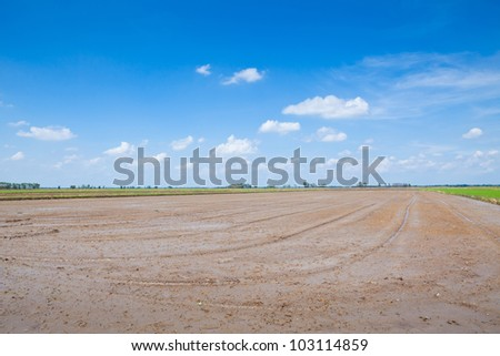 Summer Soil field and blue sky