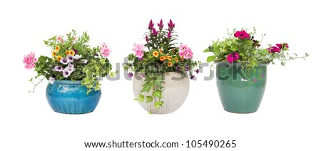 Summer / Spring flower pots isolated on a white background - stock photo