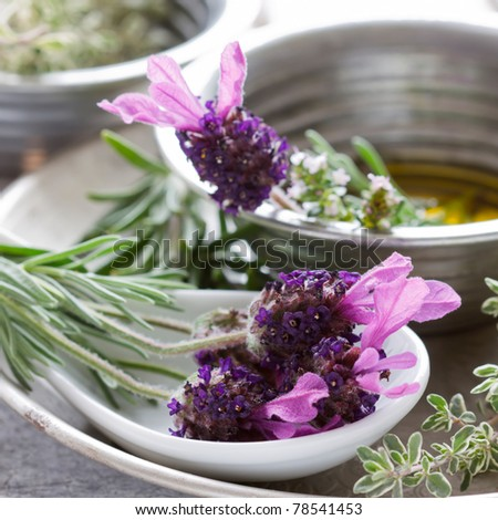 Summer still life showing lavender, oil, rosemary and thyme. - stock photo