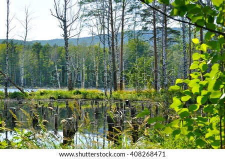 Summer sunny landscape - territory of St.Faith Island at Turgoyak lake in Southern Urals, Russia. Soft filter applied.  - stock photo