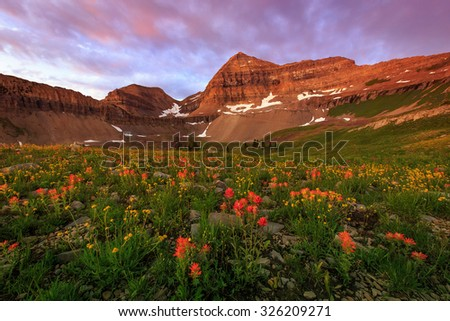 Summer sunrise in the Wasatch Mountains, Utah, USA. - stock photo