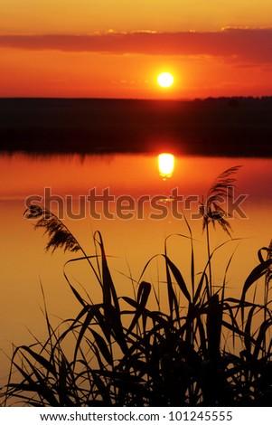 summer sunset - stock photo