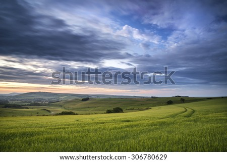 Summer sunset landscape Steyning Bowl on South Downs  - stock photo