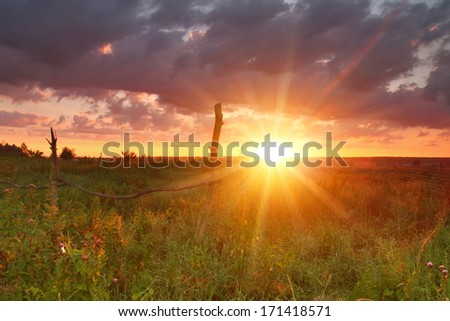 Summer sunset over the field - stock photo