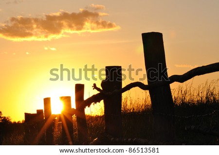 Summer sunset with  wooden fence - stock photo