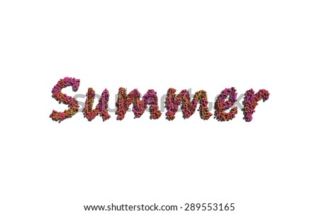 summer text flower with white background concept of typography - stock photo