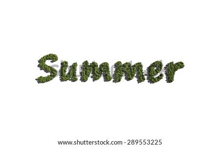 summer text tree with white background concept of typography - stock photo