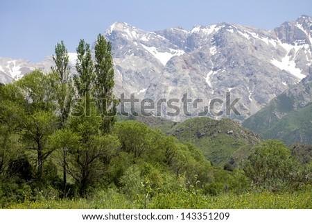 Summer Tien-Shan mountains, Kazakhstan