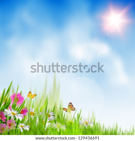 Summer time. Abstract environmental backgrounds - stock photo