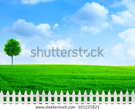 summer time outdoor rural view with white fence - stock photo
