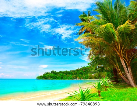 Summer tropical beach with coconut palm trees under blue sky. Exotic luxury vacations scene. - stock photo