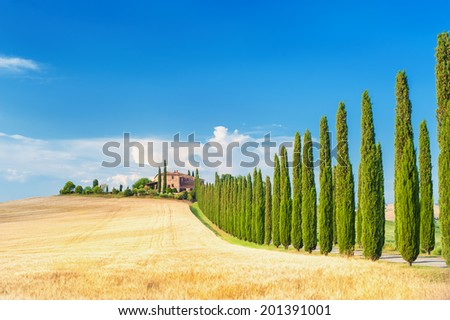 Summer Tuscan landscape, green field and blue sky in Val d'Orcia, Italy - stock photo