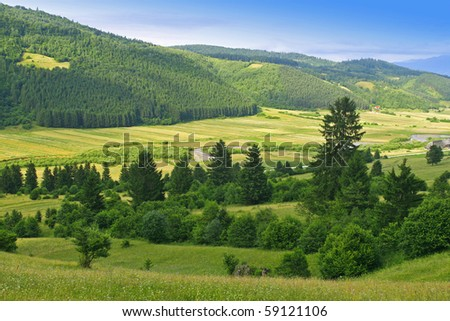 Summer valleys and hills. - stock photo