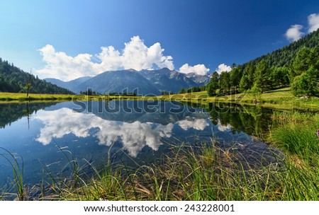 summer view of Covel lake in Pejo Valley, Trentino, Italy - stock photo