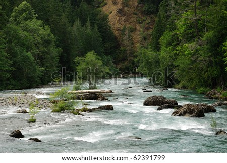 Summer view of river valley in vancouver island, british columbia, canada - stock photo