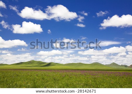 Summer view of sky and grassland - stock photo