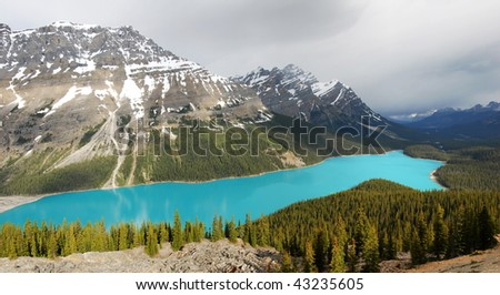 Summer view of the peyto lake and rocky mountains beside the icefield parkway, banff national park, alberta, canada - stock photo