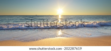 Summer word on the sea beach. Element of design. - stock photo