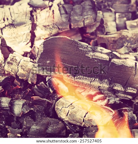 Summertime camp fire in the woods.Special toned photo in vintage style - stock photo