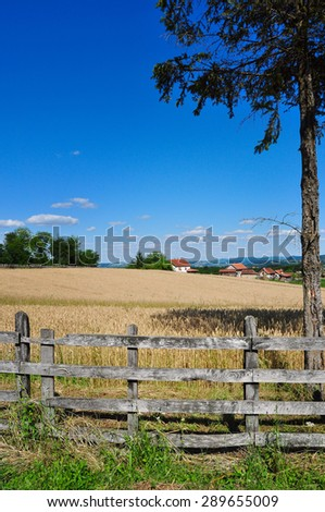 Summertime countryside landscape with yellow wheat ready to be harvested, rural scene - stock photo