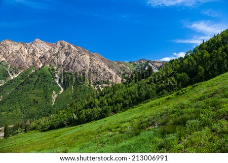 Summertime in Little Cottonwood Canyon in the Wasatch Range of the Rocky Mountains, Utah - stock photo