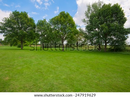 Summertime Landscape View of an  Tree in a Green Field - stock photo