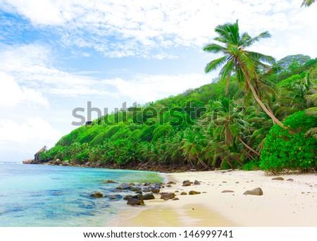 Summertime Palms Bay  - stock photo