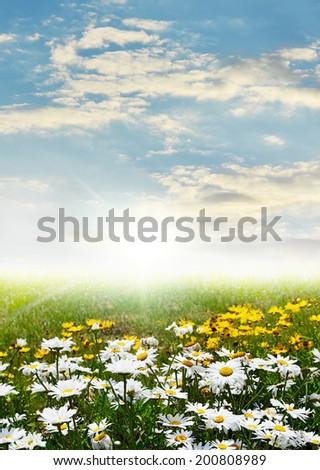 summery evening - stock photo