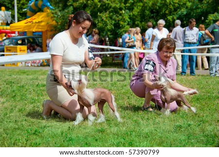 SUMY, UKRAINE - JUNE 27: Participants compete in dog show 27, 2010 in Sumy, Ukraine - stock photo