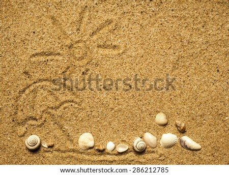 Sun and shells on sand on beach holiday background. - stock photo
