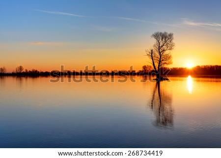 Sun and tree in lake - stock photo