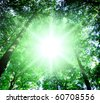 Sun Beaming Through - stock photo