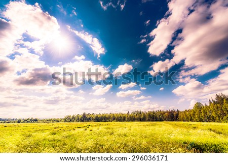 Sun comes out of cumulus clouds and illuminates a field in the forest. Image in the orange-purple toning - stock photo