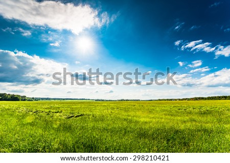 Sun comes out of cumulus clouds and illuminates a fields in the forest - stock photo