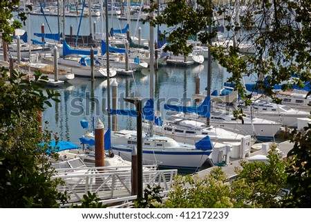 Sun-filled yacht harbor. View framed by trees. California, USA. - stock photo