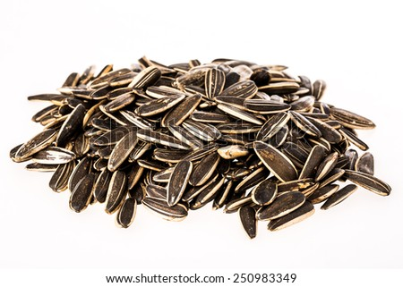 sun flower seed on white background - stock photo