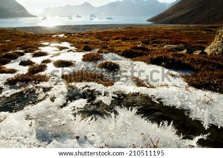 Sun Glare Frost - Greenland - stock photo