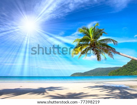 Sun over exotic  palm tree on white sand beach - stock photo