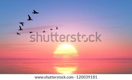 sun rise - stock photo