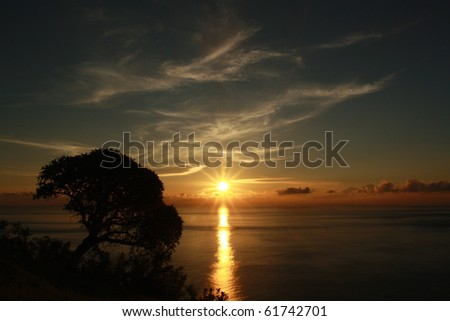 Sun rise with tree - stock photo