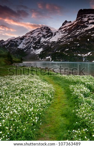 Sun rises over the lake in Switzerland with the green blooming path in foreground. - stock photo