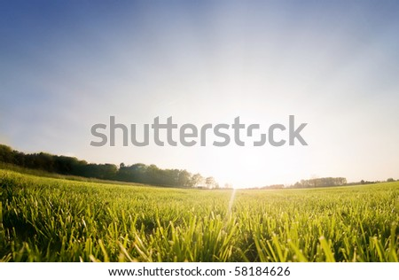 Sun rising behind a green field, perfect as setting or backdrop - stock photo